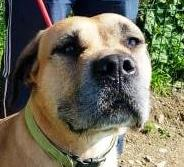 BELLA – RESERVED